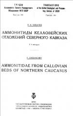 Аммониты келловейских отложений Северного Кавказа
