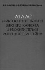 Атлас микроспор и пыльцы верхнего карбона и нижней перми Донецкого бассейна
