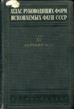 Атлас руководящих форм ископаемых фаун СССР. Том 11. Верхний отдел меловой системы