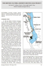 The British Columbia sediment-hosted gold project