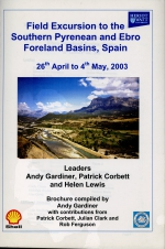 Field excursion to the Southern Pyrenean and Ebro Foreland Basin, Spain