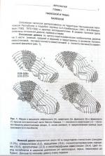 Геология Азербайджана. Том 2. Литология