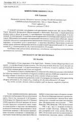 Минерагения Южного Урала