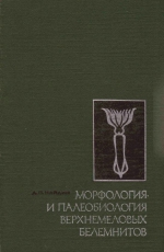 Морфология и палеобиология верхнемеловых белемнитов