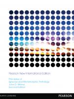 Principles of igneous and metamorphic petrology \ Принципы магматической и метаморфической петрологии