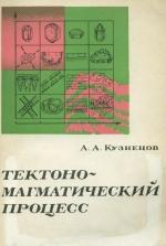 Тектоно-магматический процесс (геометрическое моделирование)