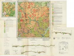 N-36-XVIII. Геологическая карта СССР.Четвертичные отложения. Серия Московская